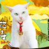 女優猫あなごさんの猫侍再び「猫侍玉之丞江戸へ行く」放送!明かされる玉之丞のルーツ