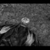 """どんばれ!佐藤健""""時代劇風新CM生まれ変わったどん兵衛""""は誰?日清どん兵衛の新シリー"""