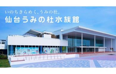 """2015年オープン""""仙台うみの杜水族館""""へ行こう!夏休みは三陸の水族館で涼しく楽しむ"""