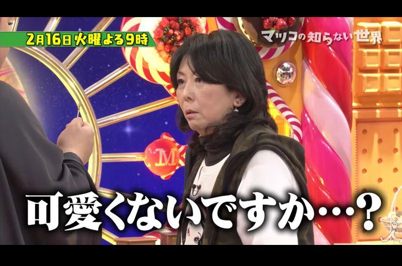 ミニチュアの世界!イクスタン鎌倉星南子さんと田中智さん!マツコの知らない世界に出演