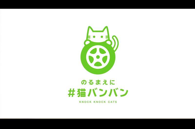 猫にお知らせを!ドライバーならやってほしい発進前の儀式!広がるNISSANプロジェクト #猫バンバン
