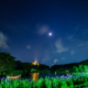横浜三渓園初夏の風物詩ライトアップと蛍の観察を楽しむ夜!ハナショウブが見頃の蛍鑑賞スポット